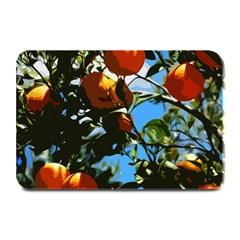 Orange Tree Plate Mats by Valentinaart