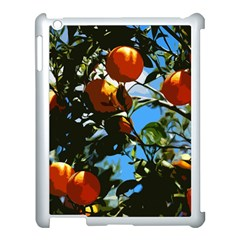 Orange Tree Apple Ipad 3/4 Case (white) by Valentinaart