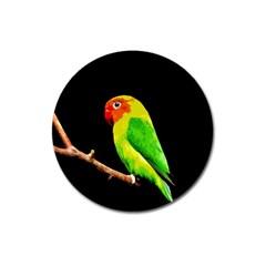 Parrot  Magnet 3  (round) by Valentinaart