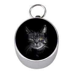 Domestic Cat Mini Silver Compasses by Valentinaart