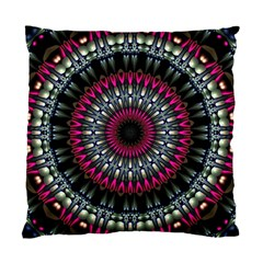 Circles Background Lines  Standard Cushion Case (two Sides) by amphoto