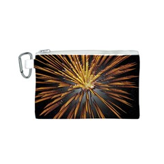 Pyrotechnics Thirty Eight Canvas Cosmetic Bag (s) by Nexatart