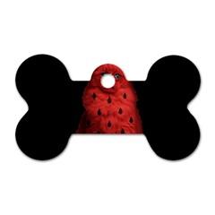 Watermelon Cat Dog Tag Bone (one Side) by Valentinaart