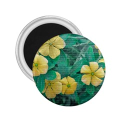 Yellow Flowers At Nature 2 25  Magnets by dflcprints