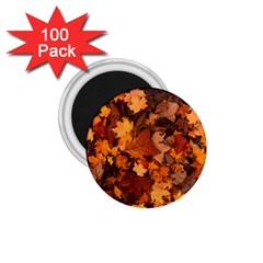 Fall Foliage Autumn Leaves October 1 75  Magnets (100 Pack)  by Nexatart