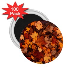 Fall Foliage Autumn Leaves October 2 25  Magnets (100 Pack)  by Nexatart