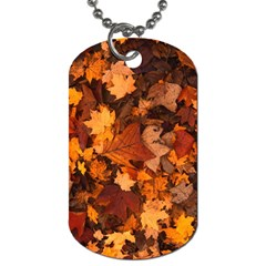 Fall Foliage Autumn Leaves October Dog Tag (one Side) by Nexatart