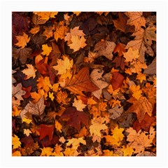 Fall Foliage Autumn Leaves October Medium Glasses Cloth by Nexatart
