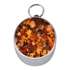 Fall Foliage Autumn Leaves October Mini Silver Compasses by Nexatart