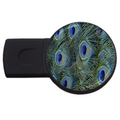 Peacock Feathers Blue Bird Nature Usb Flash Drive Round (2 Gb) by Nexatart