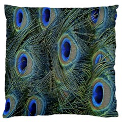 Peacock Feathers Blue Bird Nature Large Cushion Case (two Sides) by Nexatart