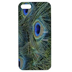 Peacock Feathers Blue Bird Nature Apple Iphone 5 Hardshell Case With Stand by Nexatart