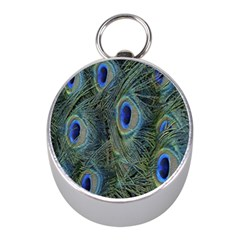 Peacock Feathers Blue Bird Nature Mini Silver Compasses by Nexatart