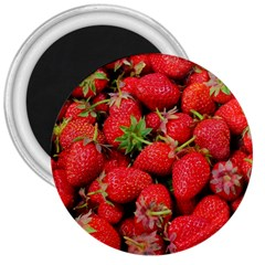 Strawberries Berries Fruit 3  Magnets by Nexatart