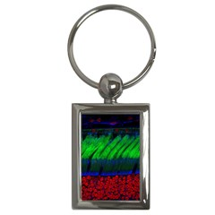 Cells Rainbow Key Chains (rectangle)  by Mariart