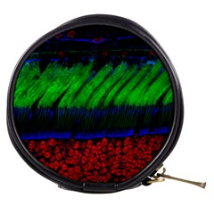 Cells Rainbow Mini Makeup Bags by Mariart