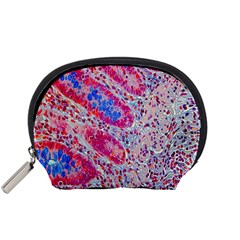 Histology Inc Histo Logistics Incorporated Alcian Blue Accessory Pouches (small)  by Mariart