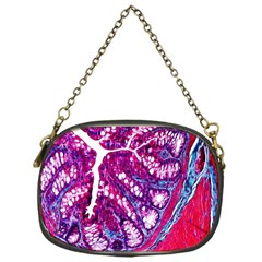 Histology Inc Histo Logistics Incorporated Masson s Trichrome Three Colour Staining Chain Purses (one Side)  by Mariart