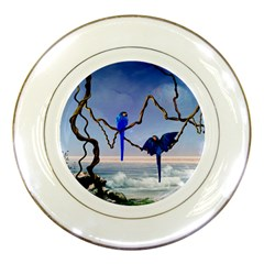 Wonderful Blue  Parrot Looking To The Ocean Porcelain Plates by FantasyWorld7