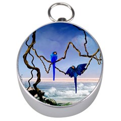 Wonderful Blue  Parrot Looking To The Ocean Silver Compasses by FantasyWorld7