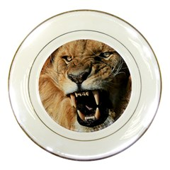 Male Lion Angry Porcelain Plates by Zhezhe