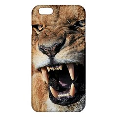 Male Lion Angry Iphone 6 Plus/6s Plus Tpu Case by Zhezhe