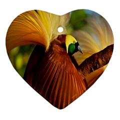 Birds Paradise Cendrawasih Heart Ornament (two Sides) by Mariart
