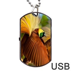 Birds Paradise Cendrawasih Dog Tag Usb Flash (one Side) by Mariart