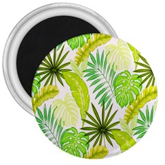 Amazon Forest Natural Green Yellow Leaf 3  Magnets by Mariart