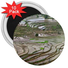 Rice Fields Terraced Terrace 3  Magnets (10 Pack)  by Nexatart