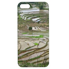 Rice Fields Terraced Terrace Apple Iphone 5 Hardshell Case With Stand by Nexatart