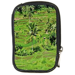 Greenery Paddy Fields Rice Crops Compact Camera Cases by Nexatart