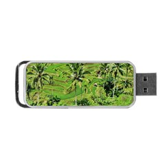 Greenery Paddy Fields Rice Crops Portable Usb Flash (one Side) by Nexatart
