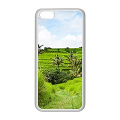 Bali Rice Terraces Landscape Rice Apple Iphone 5c Seamless Case (white) by Nexatart