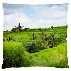 Bali Rice Terraces Landscape Rice Large Flano Cushion Case (two Sides) by Nexatart