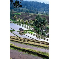 Rice Terrace Rice Fields 5 5  X 8 5  Notebooks by Nexatart