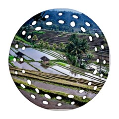 Rice Terrace Rice Fields Round Filigree Ornament (two Sides) by Nexatart