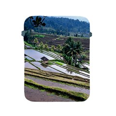 Rice Terrace Rice Fields Apple Ipad 2/3/4 Protective Soft Cases by Nexatart