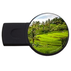 Rice Terrace Terraces Usb Flash Drive Round (2 Gb) by Nexatart