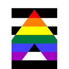 Straight Ally Flag 5 5  X 8 5  Notebooks by Valentinaart