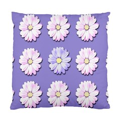 Daisy Flowers Wild Flowers Bloom Standard Cushion Case (two Sides) by Nexatart