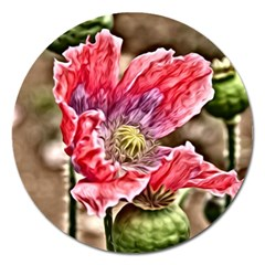 Dreamy Floral 5 Magnet 5  (round) by MoreColorsinLife