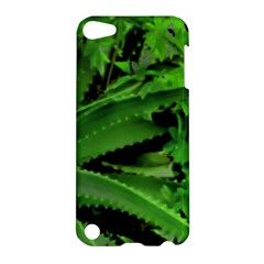 Vivid Tropical Design Apple Ipod Touch 5 Hardshell Case by dflcprints