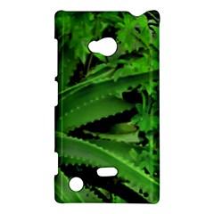 Vivid Tropical Design Nokia Lumia 720 by dflcprints