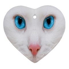 Beautiful White Face Cat Animals Blue Eye Ornament (heart) by Mariart