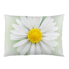 Art Daisy Flower Art Flower Deco Pillow Case (two Sides) by Nexatart