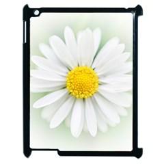 Art Daisy Flower Art Flower Deco Apple Ipad 2 Case (black) by Nexatart