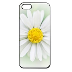 Art Daisy Flower Art Flower Deco Apple Iphone 5 Seamless Case (black) by Nexatart