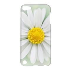 Art Daisy Flower Art Flower Deco Apple Ipod Touch 5 Hardshell Case by Nexatart
