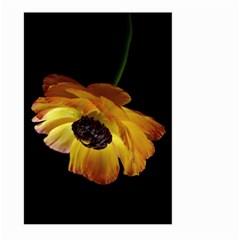 Ranunculus Yellow Orange Blossom Large Garden Flag (two Sides) by Nexatart
